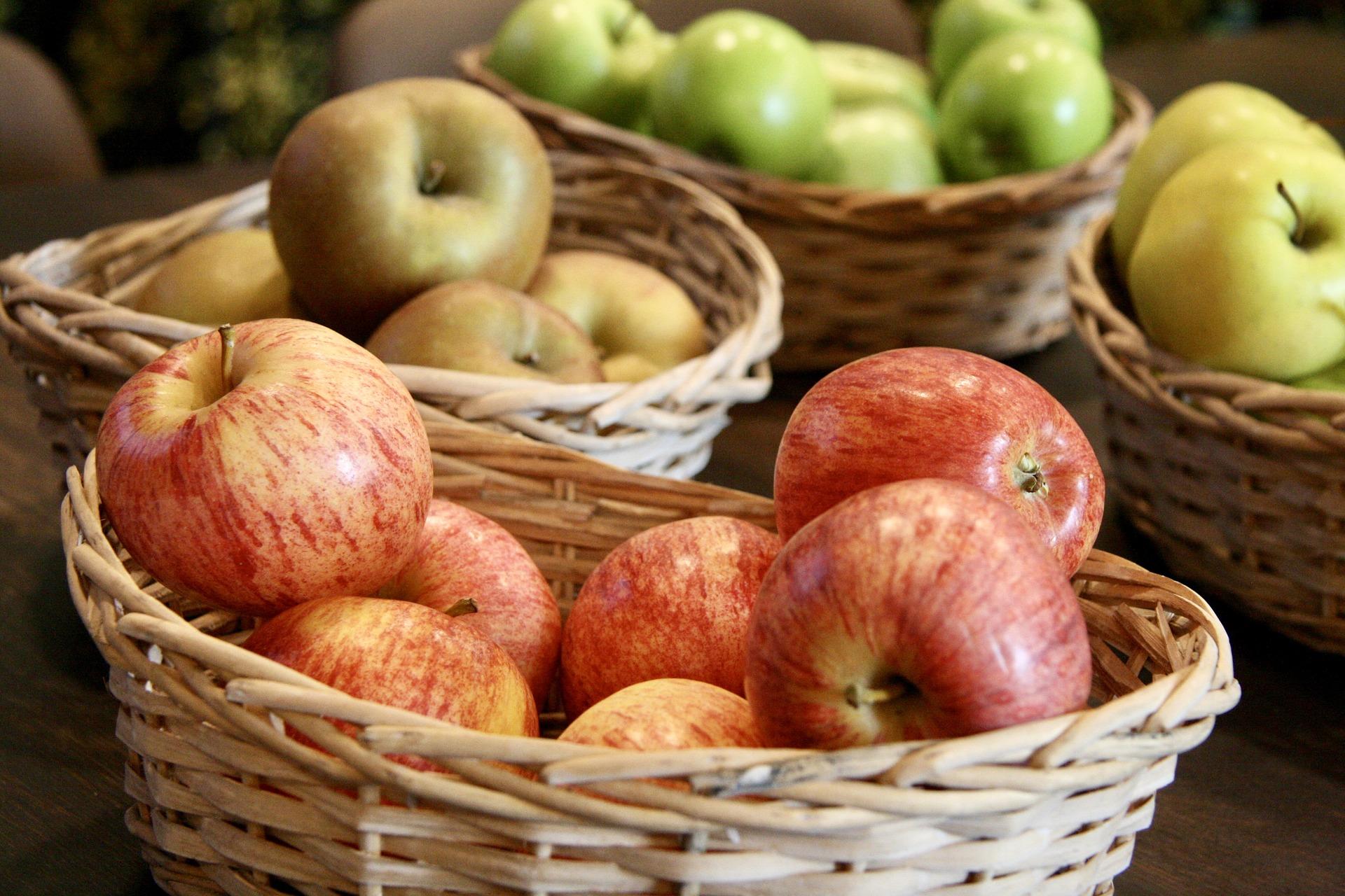 колоновидные сорта яблок фото с названием