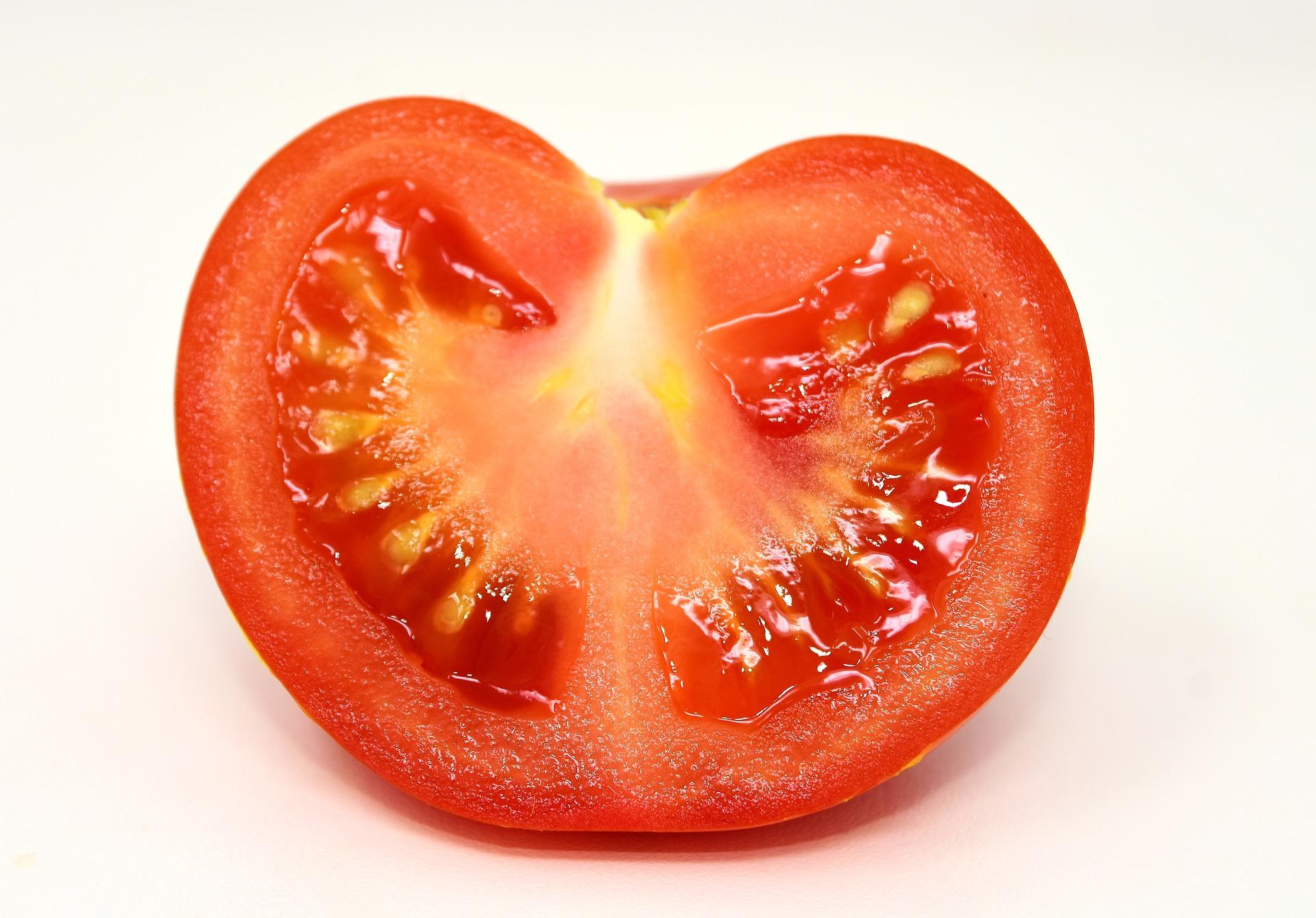 томат белый налив отзывы