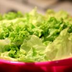 Посадка листового салата и уход за ним
