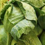 Эффективное хранение капусты зимой. Как сберечь урожай?