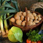 Грамотное хранение картофеля. Как не потерять урожай?