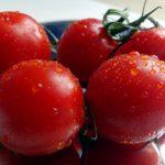 Как нужно поливать помидоры?