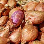 Почему гниет лук и как его сохранить?